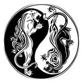 Two tigers_0003