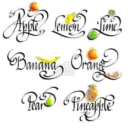 Hand drawn Words fruit and watercolor fruit set isolated on white background.