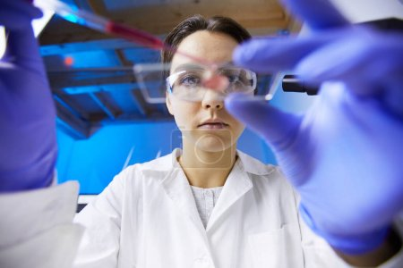Photo for Low angle view at young female scientist preparing test sample using dropper while working in medical laboratory, copy space - Royalty Free Image