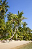 Tropical beach and sea with coconut palm tree on blue sky in Thailand