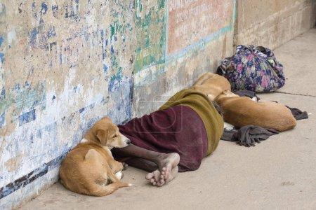 Photo pour Homme sans abri se trouve avec les chiens dans la rue près de Gange matin de Varanasi, en Inde. Gros plan - image libre de droit