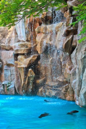 Artificial waterfall zoo
