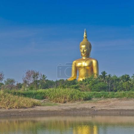 Golden Buddha big  statue