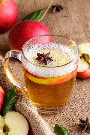 Hard apple cider with cinnamon stick and apple slice