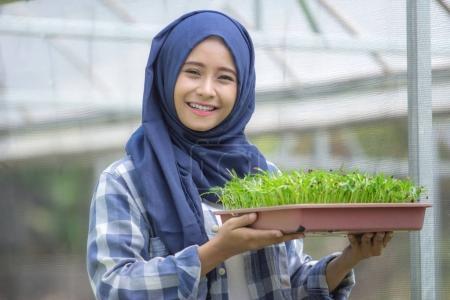 Woman holding plants pot on farm