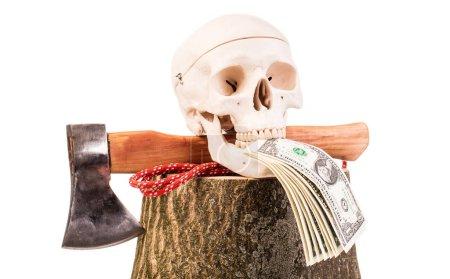 human skull, wooden log and axe