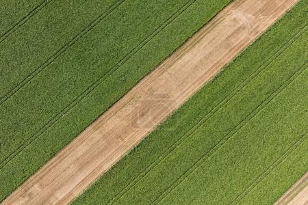 aerial view of the village landscape near Nysa city