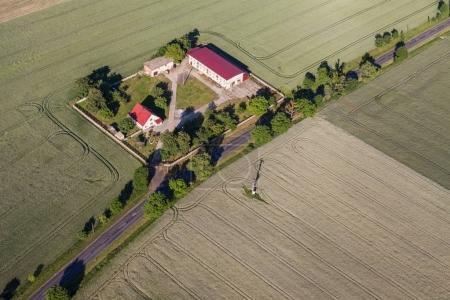 Green harvest fields