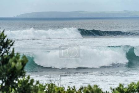 Photo pour Plan spectaculaire de l'océan ondulé avec des montagnes au loin et des branches vertes au premier plan, plage de Leigh, Nouvelle-Zélande - image libre de droit