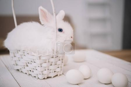 cute white easter rabbit sitting in basket with eggs on table