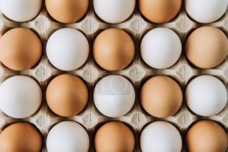 white and brown eggs laying in egg carton, full frame shot