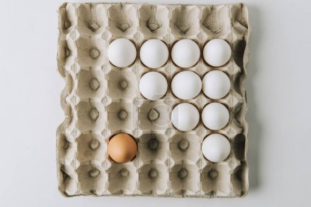 white and one brown egg laying in egg carton on white background