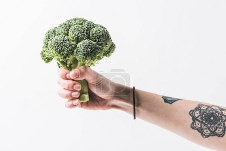 Hand holding raw broccoli cabbage florets isolated on white background
