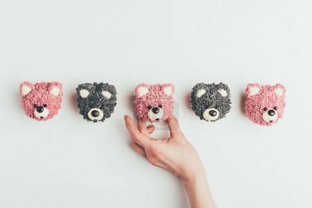 cropped shot of human hand and delicious muffins in shape of bears isolated on grey