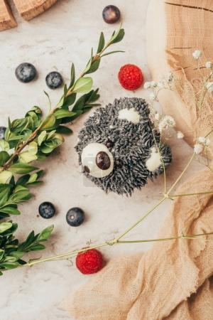 top view of sweet tasty muffin in shape of bear and fresh berries with green branch
