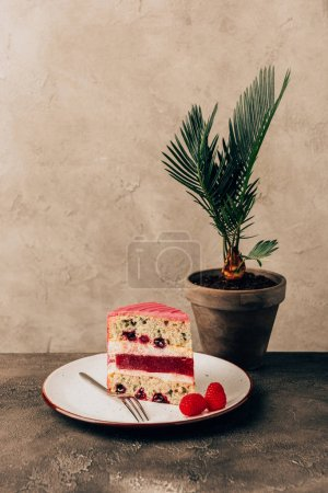 Photo for Sweet tasty cake with raspberries on plate and green houseplant - Royalty Free Image
