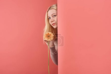 beautiful young woman with gerbera flower peeping behind wall on red