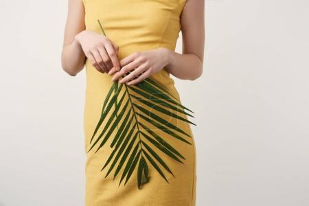 cropped shot of woman in yellow dress with palm branch isolated on white