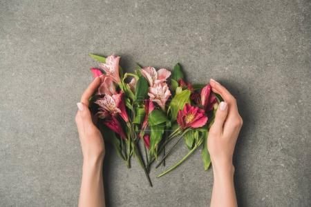 partial view of female hands and beautiful peruvian lilies on grey concrete tabletop