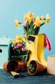 bouchent la vue des bottes de caoutchouc arrangé avec fleurs, pots, outils de jardinage et cabane d'oiseaux sur une table en bois sur bleu