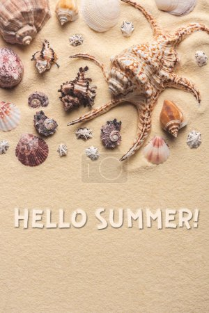 Hello summer inscription on light sand with seashells