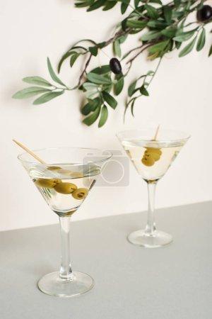Photo pour Cocktails Martini avec branche d'olivier isolé sur fond blanc - image libre de droit