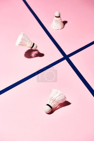 Photo for High angle view of badminton shuttlecocks on pink surface with blue lines - Royalty Free Image
