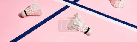 Navettes pour badminton sur fond rose avec lignes bleues