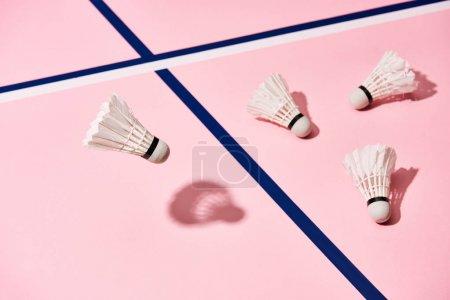 Photo pour Navettes de badminton blanc sur fond rose avec lignes bleues - image libre de droit