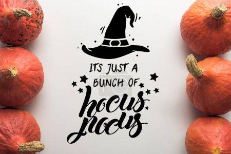 Photo pour Vue du haut des citrouilles mûres en rangées sur fond blanc avec illustration de hocus pocus - image libre de droit