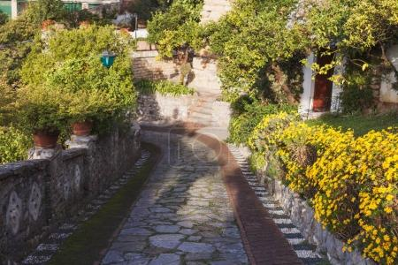stone pathway and beautiful architecture on cozy street in Portovenere, Italy