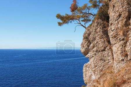 beautiful natural landscape with trees on cliff and picturesque sea in Portovenere, Italy