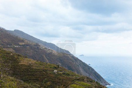 beautiful landscape with grassy hills and seascape in Riomaggiore, Italy
