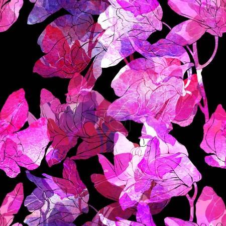 imprints tropical orchids
