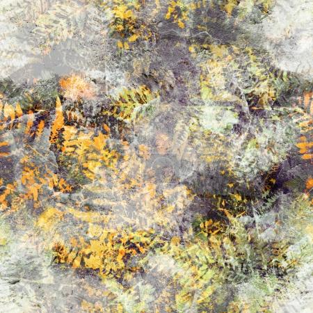 Vintage old texture of fern imprints