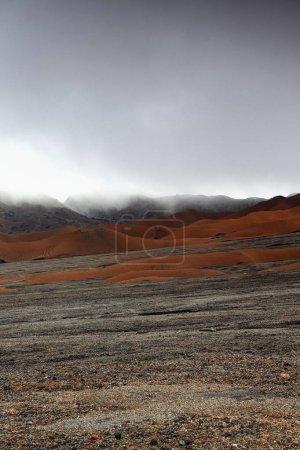 Brown ash mounds inside the 12km.-wide caldera. Ambrym island-Vanuatu. 5893