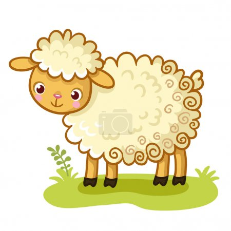 Curly sheep stands on glade