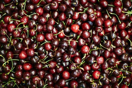 Heap of appetizing cherries