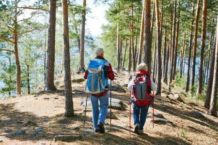 Senior couple trekking in the forest