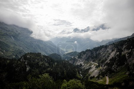 Photo for Majestic landscape with beautiful mountains, green forest and clouds in Alps - Royalty Free Image
