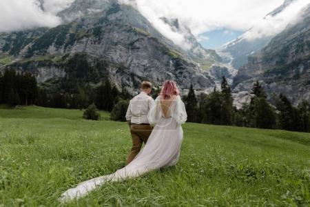 Photo pour Vue arrière de la mariée en robe de mariée et marié tenant la main et marchant sur la prairie de montagne verte dans les Alpes - image libre de droit