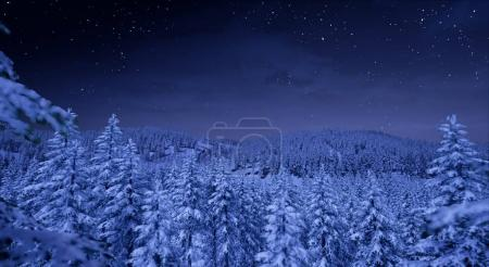 View of forest with high mountains at night with starry sky