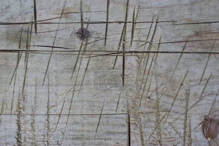 Old wooden board with cuts and cicatrices. Vintage wooden board background. Wooden board close up.