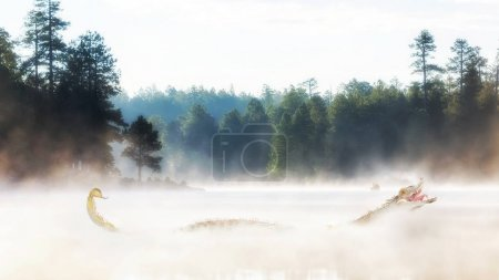Scary monster in misty lake