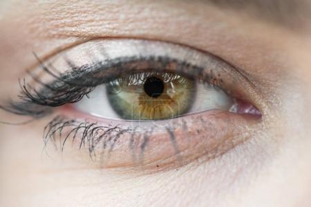 Photo pour Oeil fermer vers le haut, photo macro - image libre de droit