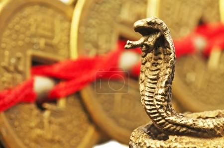 Feng Shui Year Of The Snake