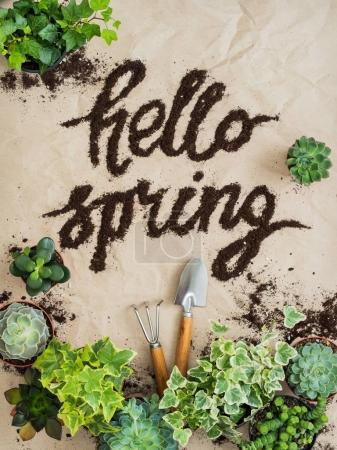 Composition of gardening tools with succulents and ivy in pots on rumpled craft paper lettering hello spring