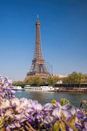 Photo for Eiffel Tower with boat during spring time in Paris, France - Royalty Free Image