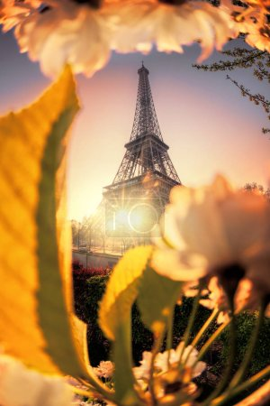 Photo for Eiffel Tower during spring time in Paris, France - Royalty Free Image