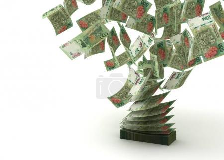 Photo pour Pesos volants argentins (isolés avec chemin de coupe ) - image libre de droit